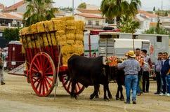 ALMAYATE HISZPANIA, KWIECIEŃ, - 21, 2018 Tradycyjny Andaluzyjski konkurs Obraz Royalty Free