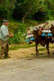 ALMAYATE HISZPANIA, KWIECIEŃ, - 21, 2018 Tradycyjny Andaluzyjski konkurs Fotografia Stock