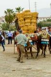 ALMAYATE HISZPANIA, KWIECIEŃ, - 21, 2018 Tradycyjny Andaluzyjski konkurs Fotografia Royalty Free