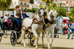 ALMAYATE, SPAIN - APRIL 22, 2018 Traditional Andalusian contest based on the presentation of the ability to drive horse with cart. ALMAYATE, SPAIN - APRIL 22 Royalty Free Stock Photography