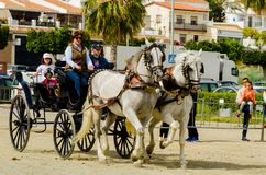 ALMAYATE, SPAIN - APRIL 22, 2018 Traditional Andalusian contest based on the presentation of the ability to drive horse with cart. ALMAYATE, SPAIN - APRIL 22 Stock Photo