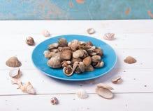Almeja con la cáscara en una placa azul en un fondo de madera blanco con la salsa de los chiles y de tomate Imagenes de archivo