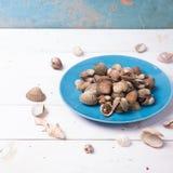 Almeja con la cáscara en una placa azul en un fondo de madera blanco con la salsa de los chiles y de tomate Foto de archivo libre de regalías