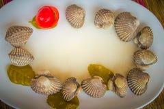 Almejas de sangre hervidas en el plato blanco con el fondo rojo del tomate y el espacio de la copia para su texto Berberechos coc imagen de archivo libre de regalías