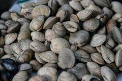 Almejas en el mercado de pescados de Angelmo en Puerto Montt, Chile imagenes de archivo