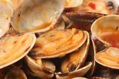 Almejas Shell en Chili Paste imagen de archivo libre de regalías
