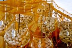 Almendra de Jordania azucarada en la ceremonia de boda con el vidrio del tronco Imagenes de archivo