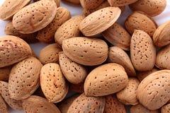 Almendras nuts Foto de archivo libre de regalías