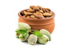 Almendras verdes frescas con la cáscara suave con isola salado de las nueces de la almendra Imagen de archivo libre de regalías