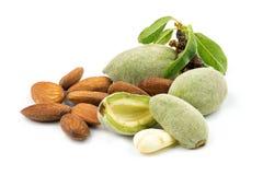 Almendras verdes frescas con la cáscara suave con isola salado de las nueces de la almendra Fotografía de archivo libre de regalías