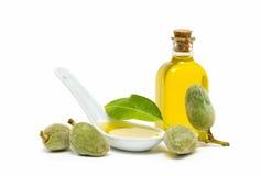 Almendras y aceite de almendra Foto de archivo libre de regalías
