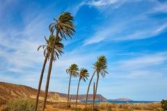 Almeria Cabo de Gata Playazo Rodalquilar beach Stock Image
