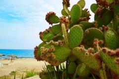 Almeria Mojacar beach Mediterranean sea Spain Royalty Free Stock Photography