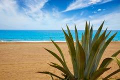 Almeria Mojacar plaży morze śródziemnomorskie Hiszpania Zdjęcia Royalty Free