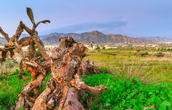 Almeria mountains Stock Photos