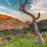 Almeria mountains Royalty Free Stock Photo