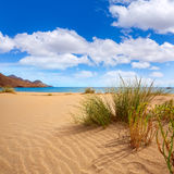 Almeria Playa Genoveses beach Cabo de Gata. Almeria Playa de los Genoveses beach dunes in Cabo de Gata Spain Royalty Free Stock Image