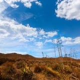 Almeria Playa los Genoveses beach Cabo de Gata Royalty Free Stock Photo
