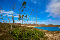 Almeria Playa los Genoveses beach Cabo de Gata Royalty Free Stock Photos