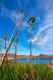 Almeria Playa los Genoveses beach Cabo de Gata Royalty Free Stock Images