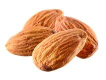 almira белизна изолированная предпосылкой nuts стоковые изображения