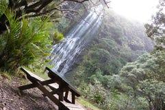 Almoço da cachoeira Foto de Stock