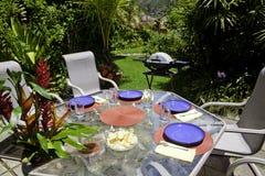 Almoço de Barbcue estabelecido em um jardim Imagem de Stock Royalty Free