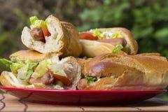 Almoço fora: sandwitches casa-feitos ascendente próximo Fotografia de Stock