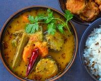 Almoço indiano sul - vegetariano e sem glúten fotos de stock royalty free