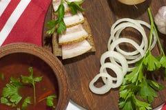 Almoço ucraniano tradicional Imagem de Stock