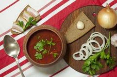 Almoço ucraniano tradicional Imagens de Stock