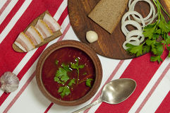 Almoço ucraniano tradicional Fotografia de Stock