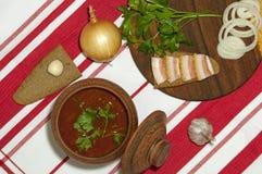 Almoço ucraniano tradicional Fotos de Stock Royalty Free