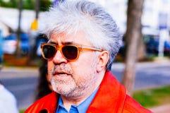 almodovar σκηνοθέτης Pedro στοκ εικόνα με δικαίωμα ελεύθερης χρήσης