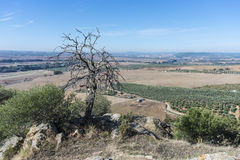 Almodovar del Rio Castle, Cordoba, Andalusia, Spain. Views from Almodovar del Rio Castle, arab fortress built in 740 on an old building in early times near Stock Images