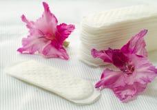 Almofada da higiene Foto de Stock Royalty Free