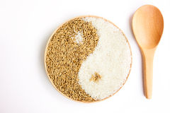 Almofada e arroz no plante Foto de Stock