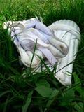 Almofadas da batedura do críquete dos homens Imagens de Stock Royalty Free