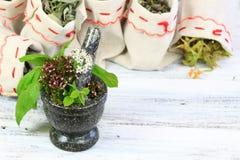 Almofariz com a erva dos oréganos, da manjericão e do sábio Fotos de Stock Royalty Free