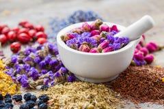 Almofariz de ervas curas, de variedade da tisana e de bagas secas fotos de stock royalty free