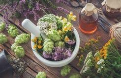 Almofariz de ervas medicinais, de plantas saudáveis, de garrafa da tintura ou de infusão Vista superior imagem de stock royalty free