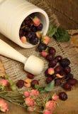 Almofariz de madeira e quadris cor-de-rosa dispersados Imagens de Stock Royalty Free