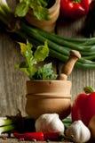Almofariz do vintage e mistura de vegetais com reflexo Fotografia de Stock