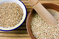 Almofariz e bacia com cereal Foto de Stock