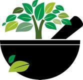 Almofariz e pilão com árvore erval ilustração stock