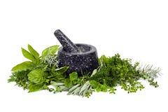 Almofariz e pilão com as ervas frescas sobre o branco Fotografia de Stock Royalty Free