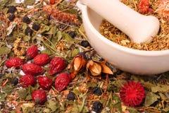 Almofariz e pilão com ervas Imagem de Stock