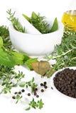 Almofariz e pilão com ervas e especiarias Fotografia de Stock