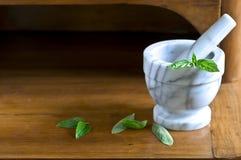 Almofariz e pilão com folhas Imagem de Stock