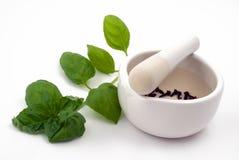 Almofariz, ervas e especiarias brancos Imagens de Stock Royalty Free